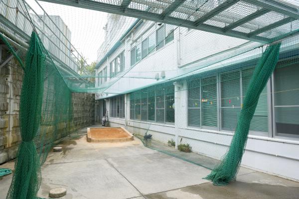 屋外トレーニング施設